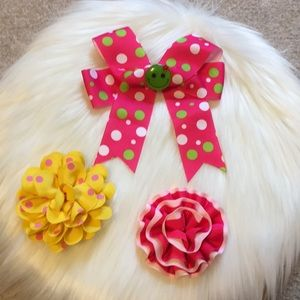 Bright and Fun Hair bow and clips